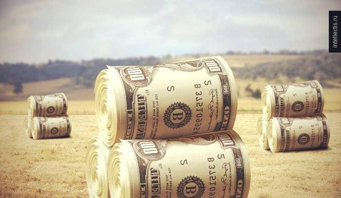 Пример бизнес-плана для прибыльного крестьянского и фермерского хозяйства