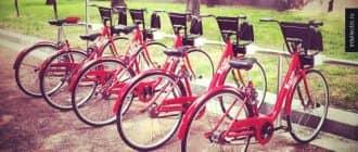 Бизнес-план велопрокат