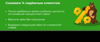 Все про займ в МФО МишкаМани 2